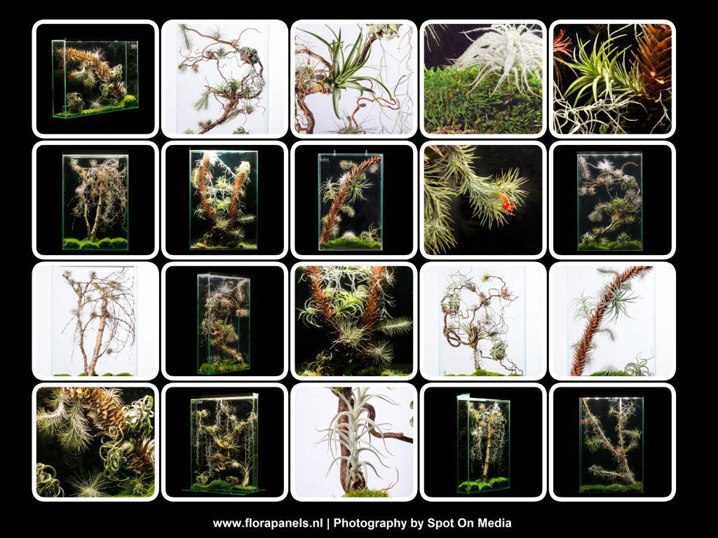 Collage Florapanels - Spot On Media